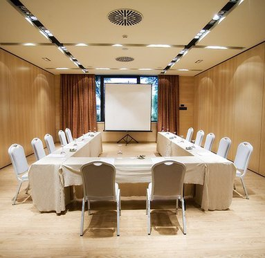 The hotel also offers the possibility of holding meetings.