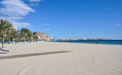 The SERCOTEL HOTEL BONALBA ALICANTE hotel offers you a relaxing ...