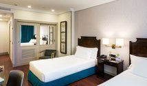 Ideal rooms for tourism and for business in Madrid