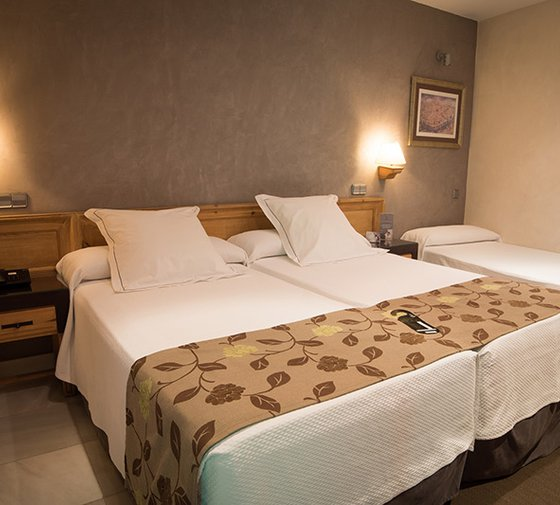 Our Sercotel Pintor El Greco has rooms to accommodate up ...